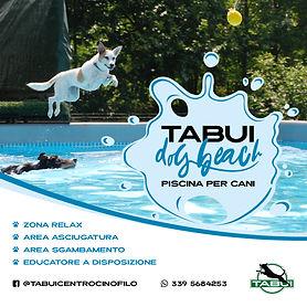 post instagram piscina per cani.jpg