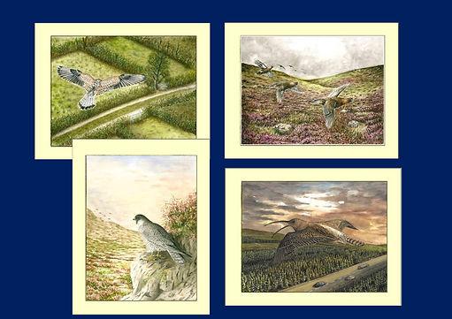 Wildlife Print Examples-page-0.jpg