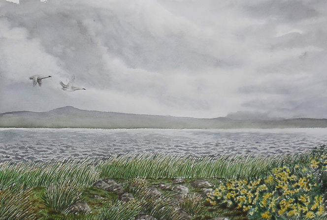 Lough gara monasteraden sligo painting