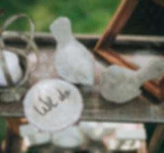 wedding dove