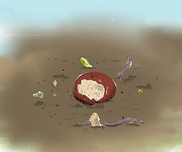 Animation Compost - Couleurs.png