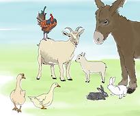 Animation Animaux & 5 Sens - Couleurs.pn