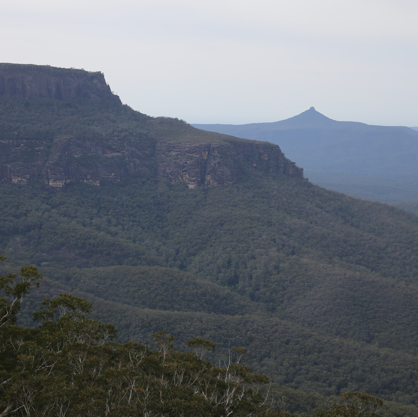 Pigeon House Mt from Yurnda Lookout