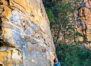 Lindeman Pass - Wentworth Falls to Leura (Blue Mountains NSW)
