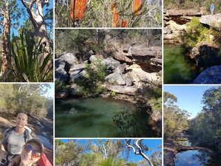 Kangaroo Creek - from Waterfall to Heathcote - Royal NP