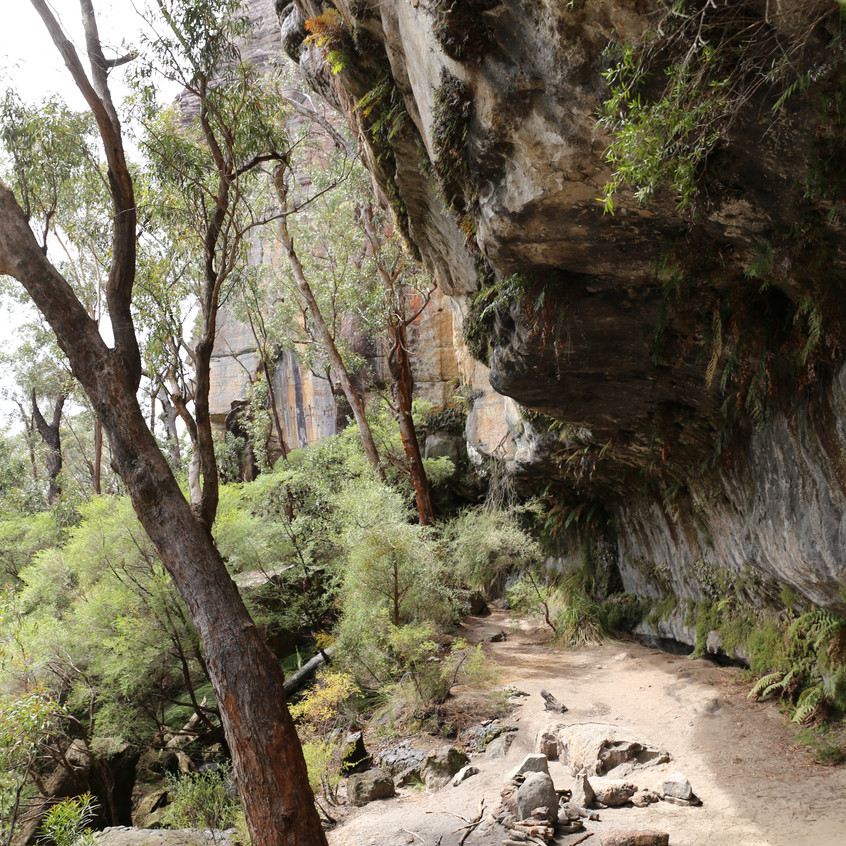 Mt Cole camping cave