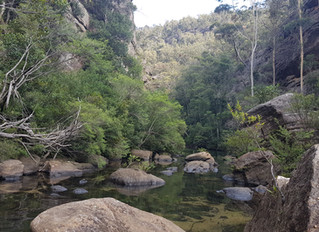 Canyoning - Wollangambe River