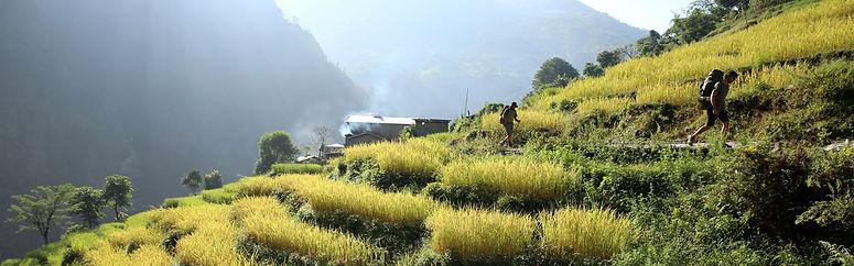 Project Fit Trekker in Nepal Manaslu Circuit