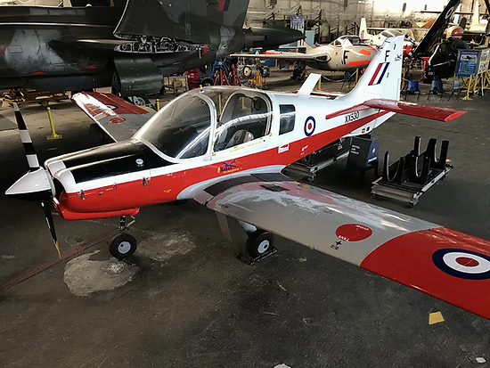Bulldog-with-Wings-Feb2020-IMG_4503-MJC.