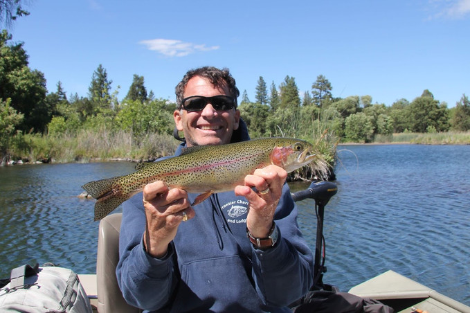 Wild Trout Fishing Riverbend Adventures