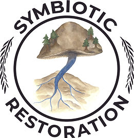 Symbiotic Restoration logo A mushroom and streambed connecting on an alluvial plane