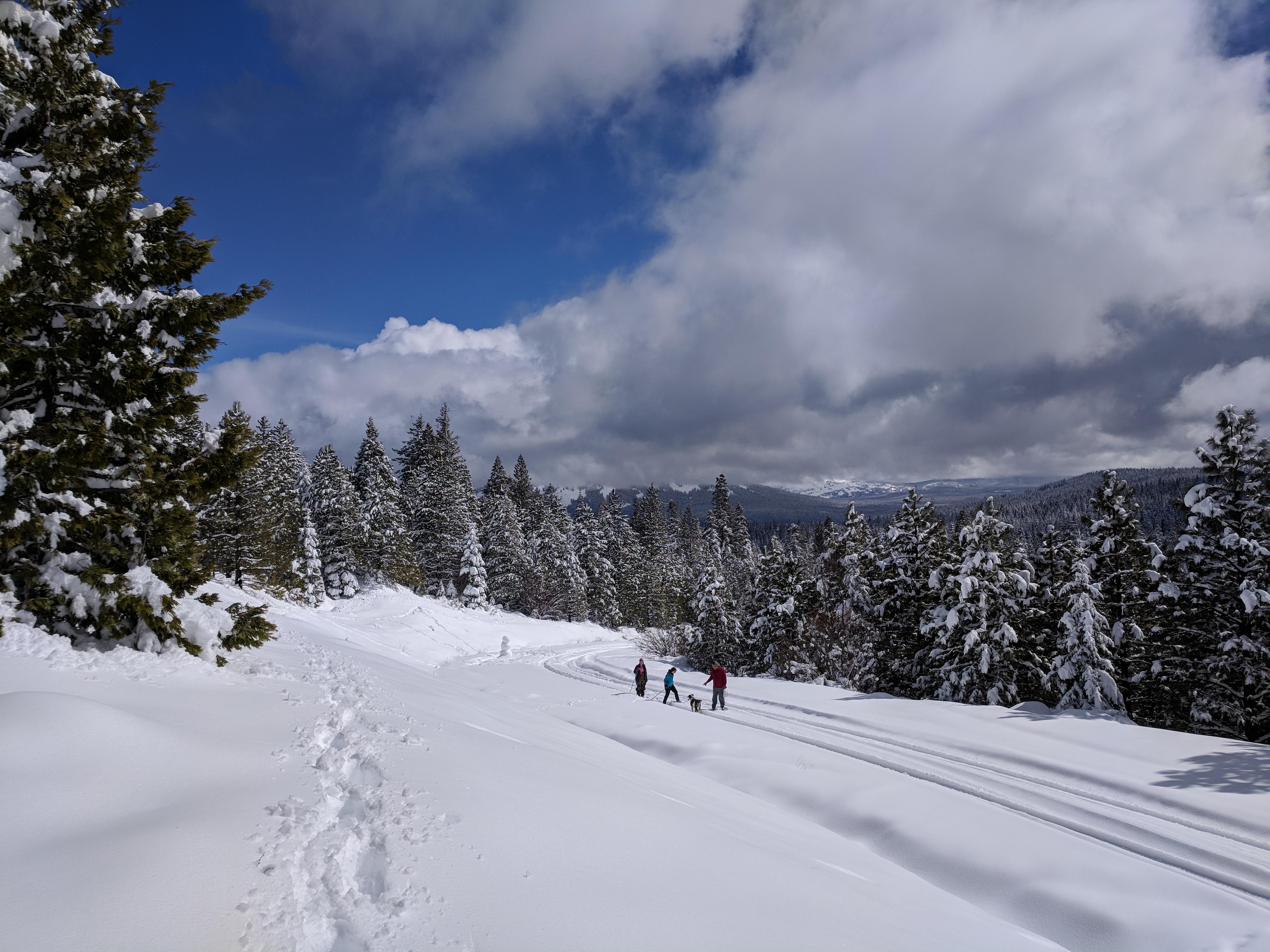 Snowshoe Hatchet Mtn.