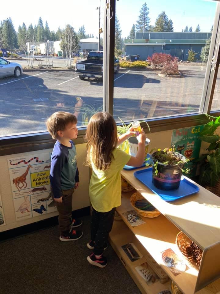Children watering the indoor plants