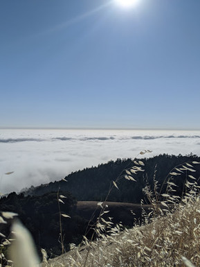 Blanket of Clouds, Mount Tamalpais, Photo by Nicole Iwahashi