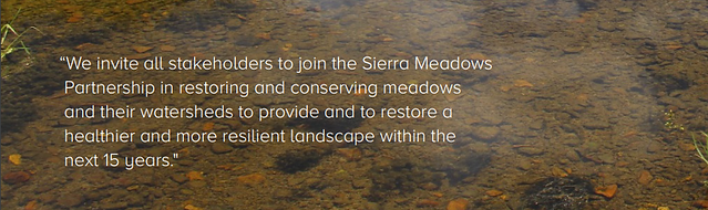 We invite all stakeholders to join the Sierra Meadows Partnership in restoring and conserving meadows and their watersheds to provide and to restore a healthier and more resilient landscape within the next 15 years