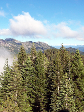 Gard View From Bear Basin Butte, US Forest Service photo