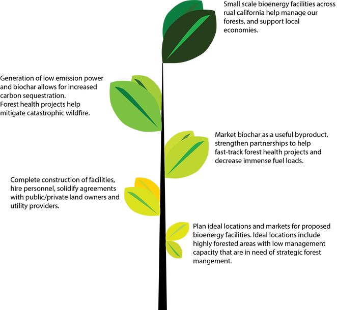 Bio energy growth flow chart
