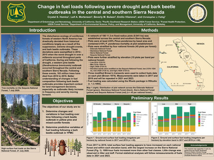 Change in fuel loads following severe drought and bark beetle outbreaks in the central and southern Sierra Nevada