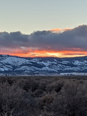 Suprise Sunset