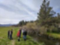 Project partners survey Hat Creek