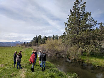 Project partners survey Hat Creek