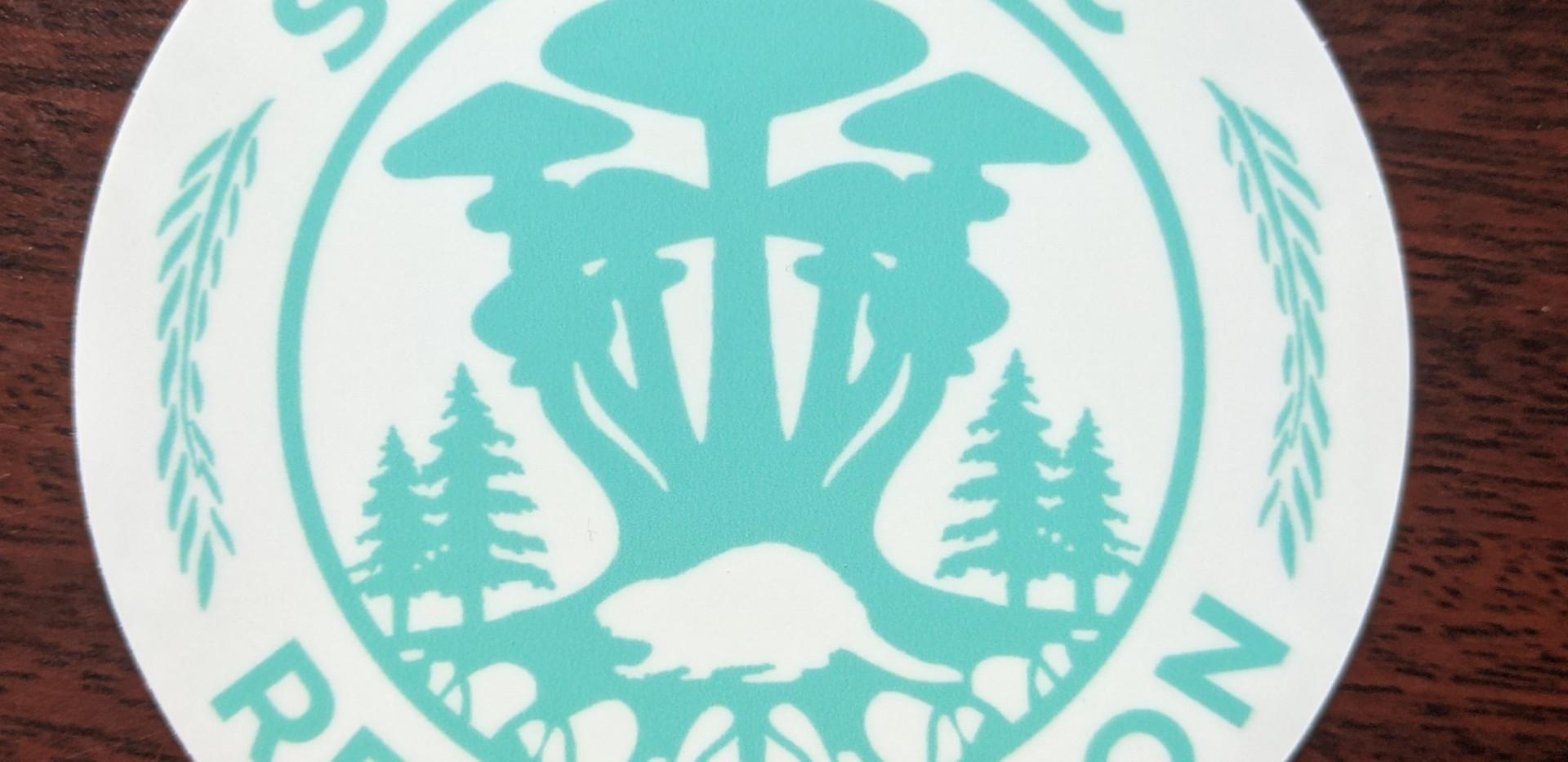 Terquoise Mushroom Beaver