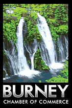 Burney chamber logo