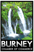 Burney chamber logo.png