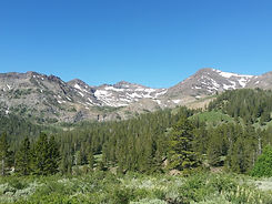 Views of the sierra from Sonora pass