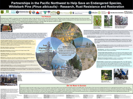 Partnerships in the Pacific Northwest to help save an edangered species.
