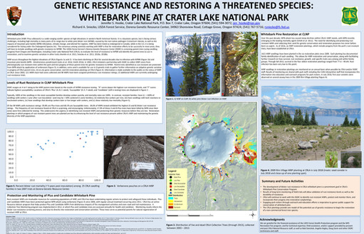 Genetic resistance and restoring a threatened species: whitebark pine at crater lake national park
