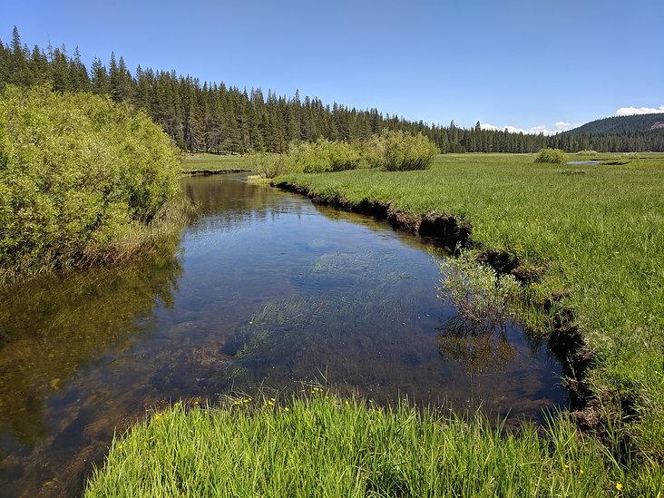 A stream cutting through an eroding channel