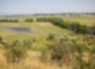 Irrigation pasture PK Deforest Ranch