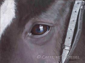 Arie's Eye