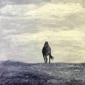 Week 26:  Solitude