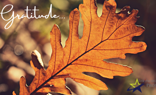 Find Joy This Season -Show Gratitude