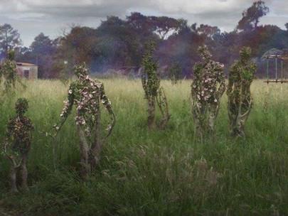10 Filmes sobre Eco-Horror