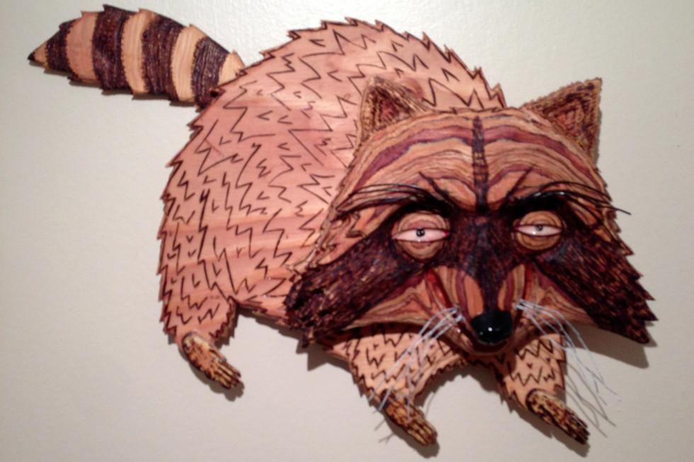 Raccoon (2013)