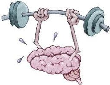 brain+fun.jpg