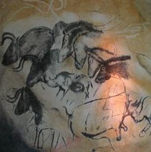 c+bison.jpg