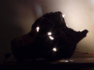Lampe en pommier BIO.jpg