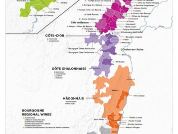 2009 Red Burgundy