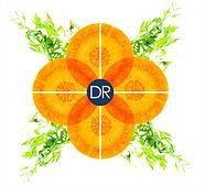 eclat carotte.jpg