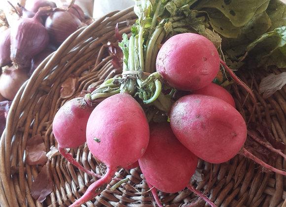 Small bunch radish