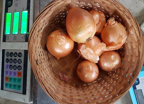 Brown Onions, 1kg