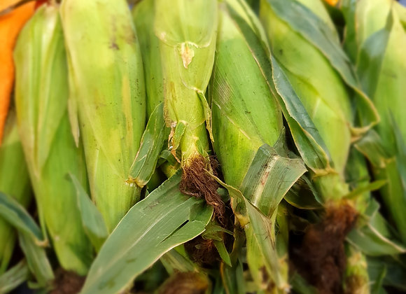 Sprayfree corn