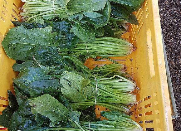 Spinach [ bunch ]