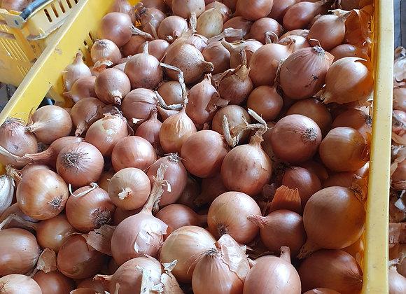 Pickling onions 1kg aprox