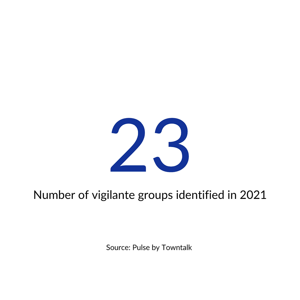 Vigilante groups identified in 2021