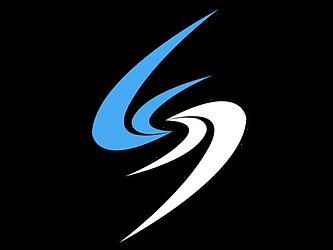 logo-whiteflash-blk.png